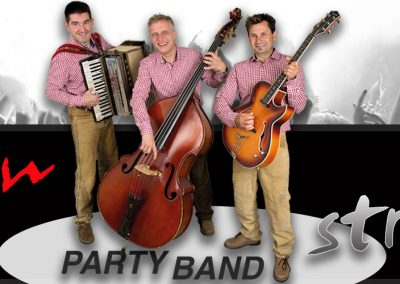 Alpenstreuner Party Band